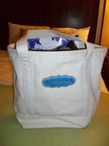 Blissdom bag